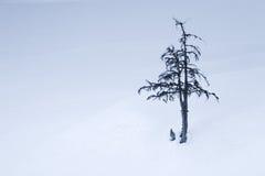 Einsamkeit-Stellung Stockbild