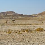 Einsamkeit und Leere der Wüste Lizenzfreies Stockbild