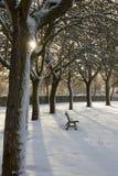 Einsamkeit und Park-Bank mit dem Schnee leer Stockbild