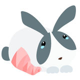 Einschienende Beinillustration der Kaninchenverletzung Lizenzfreie Stockfotos