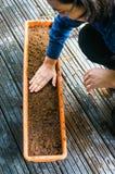 Einsetzen von Samen in Blumentopf lizenzfreie stockfotografie