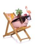 Einsparung für ein Feiertagssparschwein herausgeschnitten Stockfotografie
