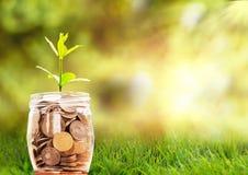 Einsparungen des Geldes, verloren stockfotos
