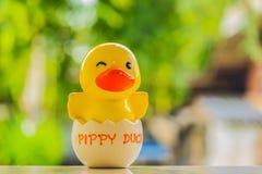 Einsparungen Pippy-Ente Stockfotos