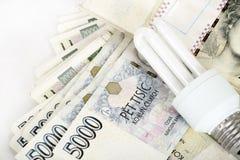 Einsparungsgeld mit energiesparender Birne Lizenzfreie Stockfotos