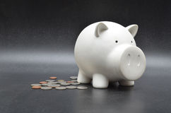 Einsparungsmünze im Weißdoppelpol auf schwarzem Hintergrund stockbild