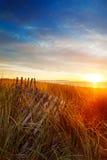 Einstürzendünezaun des Sonnenaufgangs Stockfoto