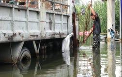 Einstellen des Fischernetzes Stockfotografie