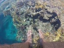 Eintauchen von Füßen im Meerwasser vom Pier Stockbild