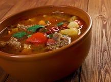 Eintopf -Traditional german cuisine dish. Stock Photography