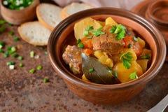 Eintopfgericht mit Gemüse und Kartoffeln stockbild