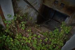 Eintritt eines verlassenen Kellers - horroristic Szene von oben lizenzfreies stockbild