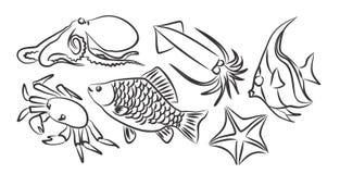 Einwohner der Meere Lizenzfreies Stockfoto