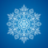 Einzelne ausführliche Schneeflocke Stockfotografie