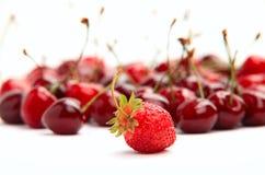 Einzelne Erdbeere auf Hintergrund der Kirschen Lizenzfreies Stockfoto