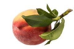 Einzelne frische Frucht des Pfirsiches lokalisiert auf weißem Hintergrund lizenzfreie stockfotos