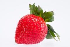 Einzelne Frucht der roten Erdbeere lokalisiert auf weißem Hintergrund Lizenzfreies Stockbild