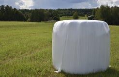 Einzelne Grünfutteraufbewahrung conservated im Plastik, der auf einem grünen Feld steht Stockbild