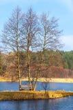 Einzelne Holzbank und Bäume auf dem Flussbank- oder Seeufer im Freien Herbstliche ruhige Landschaft Lizenzfreie Stockbilder