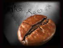 Einzelne Kaffeebohne lizenzfreie stockfotos