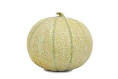 Einzelne Kantalupe-Melone Lizenzfreies Stockfoto