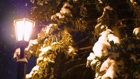 Einzelne Nachtlaterne belichtet den Schnee im Park Lizenzfreies Stockfoto