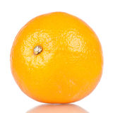 Einzelne orange Frucht Lizenzfreie Stockbilder