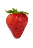 Reife Erdbeere Stockbild