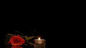 Einzelne romantische Orange stieg mit einer brennenden Kerze Lizenzfreie Stockbilder