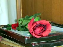 Einzelne Rose auf Büchern lizenzfreies stockbild
