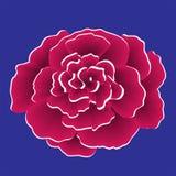 Einzelne rote Papierblume mit weißem Rand Lizenzfreie Stockfotografie