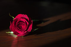 Einzelne Rotrose auf einer Holzoberfläche Lizenzfreie Stockfotografie
