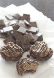 Einzelne Schokoladenkäsekuchen stockbilder
