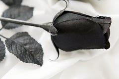 Einzelne schwarze dekorative Rose Lizenzfreies Stockfoto
