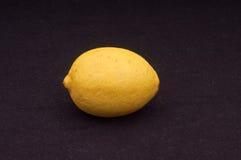 Einzelne Zitrone Stockfotos