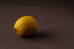 Einzelne Zitrone auf dunkler Tischdecke Stockbilder