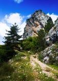 Einzelner Felsen am Berg im Sommer Stockfotos