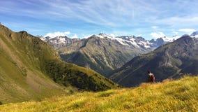 Einzelner Mann allein in den Alpen lizenzfreie stockfotos
