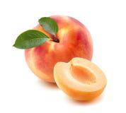 Einzelner Pfirsich, Aprikosenhälfte lokalisiert auf weißem Hintergrund Lizenzfreies Stockbild