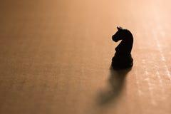Einzelner Schachritter des Schattenbildes Stockfoto