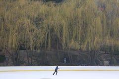 Einzelner Schlittschuhläufer auf Wollman-Eisbahn in New York City lizenzfreies stockfoto