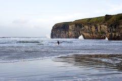Einzelner Surfer, der die Winterwellen surft Stockbilder