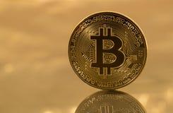 Einzelnes bitcoin mit Reflexion auf Goldhintergrund Lizenzfreies Stockfoto