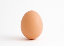 Einzelnes Ei auf Weiß Stockfoto
