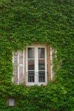 Einzelnes Fenster Stockfotos