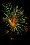 Einzelnes Feuerwerk mit einer grünen Explosion Stockfotos