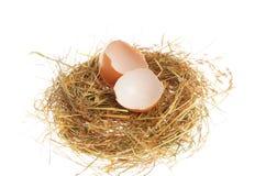 Einzelnes gebrochenes Ei im Nest Lizenzfreies Stockbild
