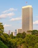 Einzelnes hohes Gebäude, das einen Park übersieht Stockfotografie