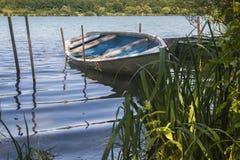 Einzelnes kleines Boot mit Schilfen Lizenzfreies Stockbild