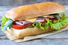 Einzelnes panini Sandwich stockfotografie
